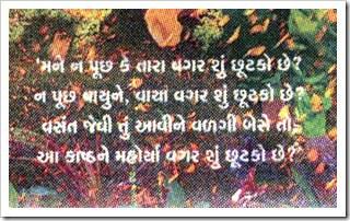 Divya Bhaskar_Mane na puchh ke_highlight